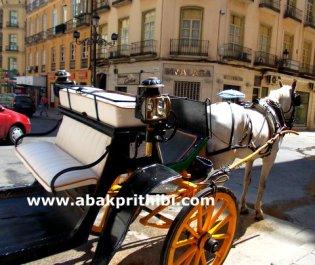 Horse cart in Europe