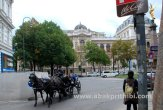 Horse carts in Europe (10)