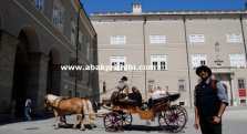 Horse carts in Europe (18)