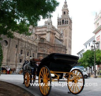 Horse carts in Europe (2)