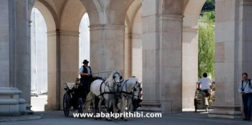 Horse carts in Europe (21)