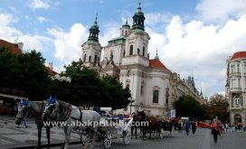 Horse carts in Europe (23)