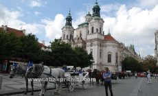 Horse carts in Europe (24)