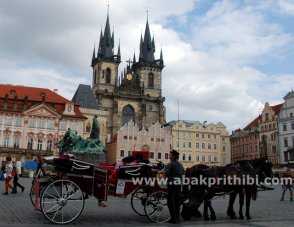 Horse carts in Europe (26)