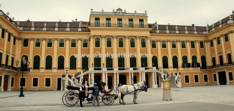 Horse carts in Europe (28)