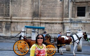 Horse carts in Europe (3)