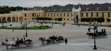 Horse carts in Europe (30)