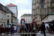 Horse carts in Europe (7)