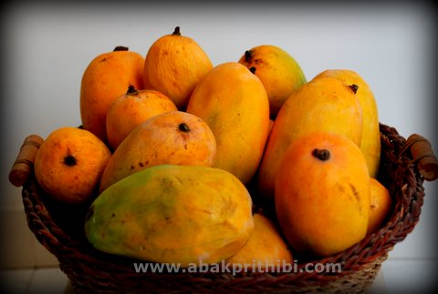 Mango - National Fruit of India (2)