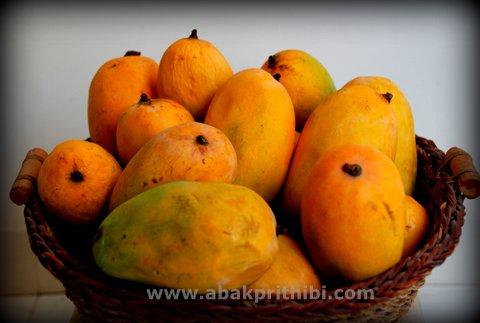 Mango - National Fruit of India (2)