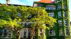 The University of Chicago (9)