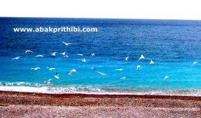 Nice beach, France (6)