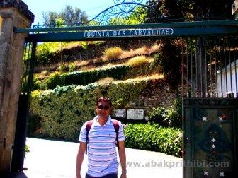 Quinta, Wine Estate near Porto, Portugal