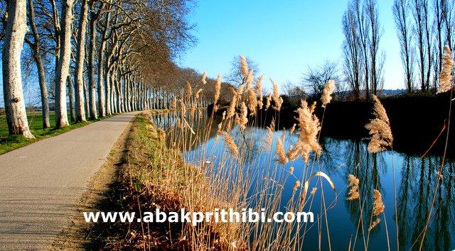 Bengali blog photo.JPG