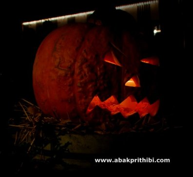 Jack o'lantern of Halloween (1)