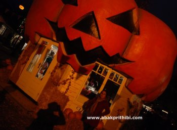 Jack o'lantern of Halloween (4)