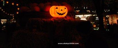 Jack o'lantern of Halloween (5)