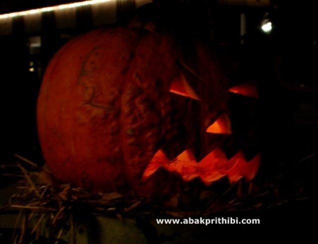 Jack o'lantern of Halloween (6)