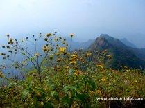 Arthur point, Mahabaleshwar, India (1)