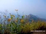 Arthur point, Mahabaleshwar, India (5)