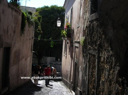 Alley of Europe (1)