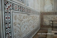 The Taj Mahal, Agra, India (5)