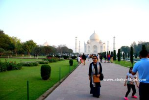 The Taj Mahal, Agra, India (7)
