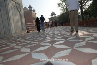 The Taj Mahal, Agra, India (8)